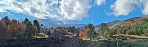 autunno piano provenzana