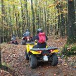 Bosco di castagne escursione in quad