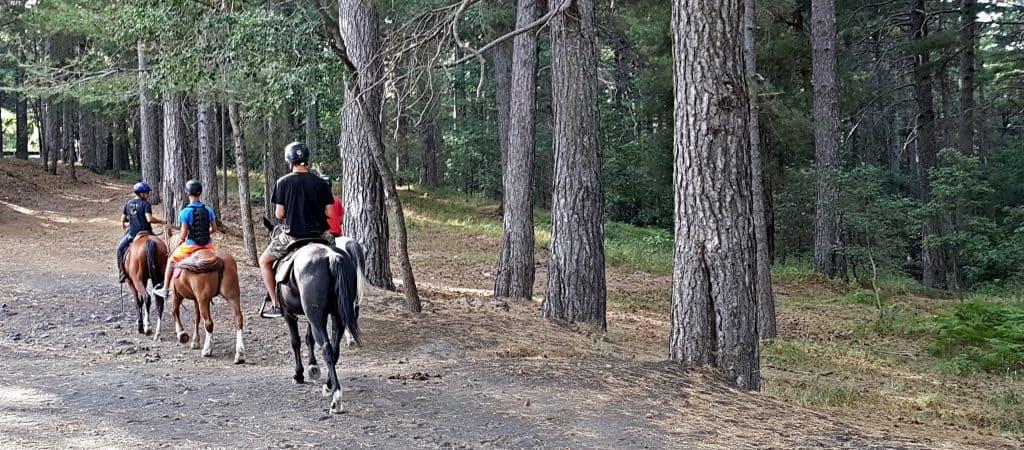 cavalli pineta ragabo