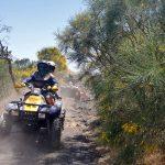 Ginestra dell'Etna quad escursione