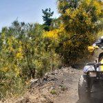 Lava ginestre quad Sicilia