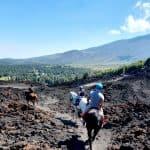 Passeggiata a cavallo sull'Etna