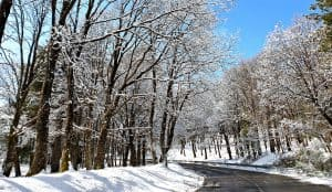 Strada Mareneve per Piano Provenzana inverno neve
