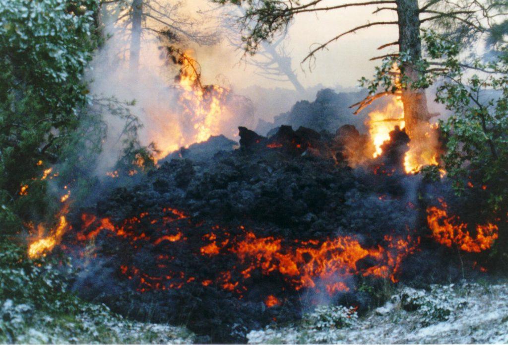 lava etna eruzione 2002 bosco
